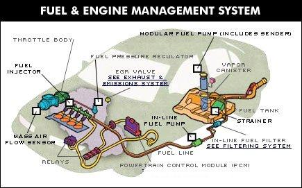 rich fuel rh richfuel synthasite com Drag Racing Fuel System Diagrams sprint car fuel system diagram